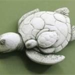 Sea Turtle Travelers