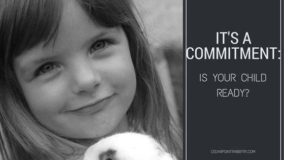 It's a Commitment: Is Your Child Ready?