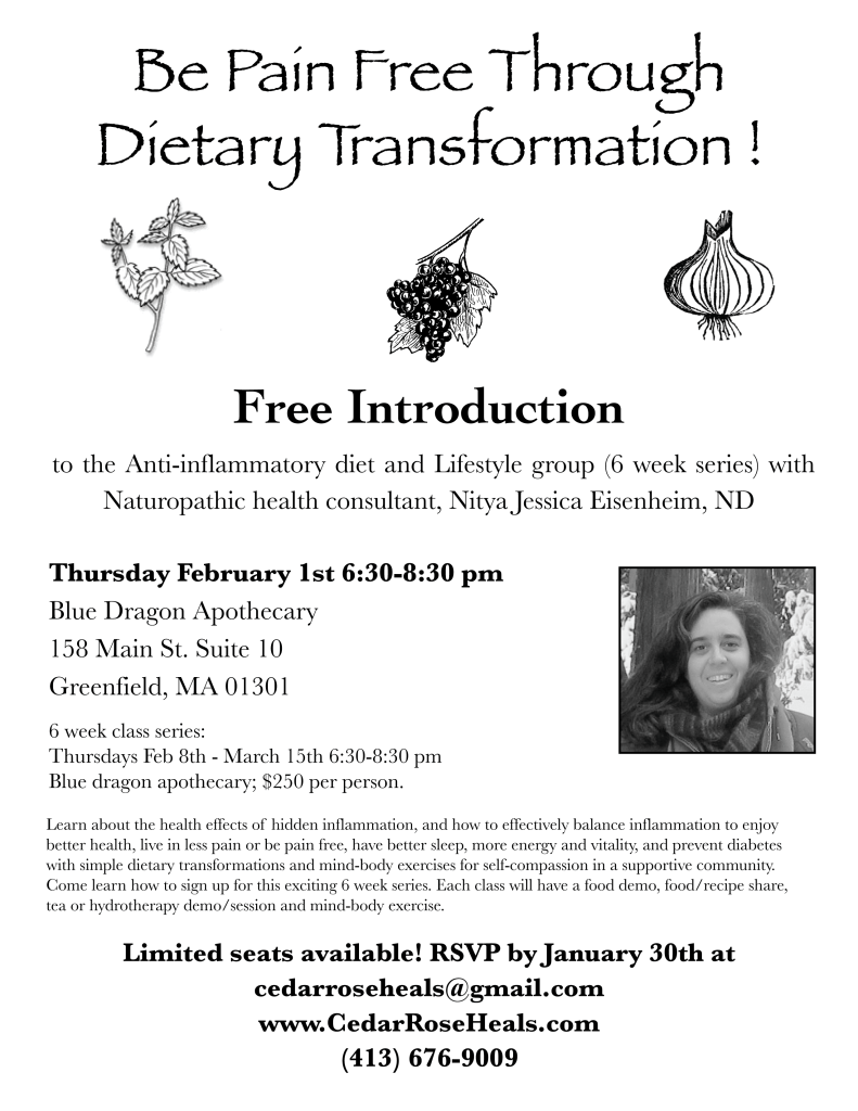 Free intro to Being Pain Free Through Dietary Transformation!