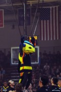 Cedarville's Yellow Jacket mascot pairs up with the cheerleading team to do a flip.