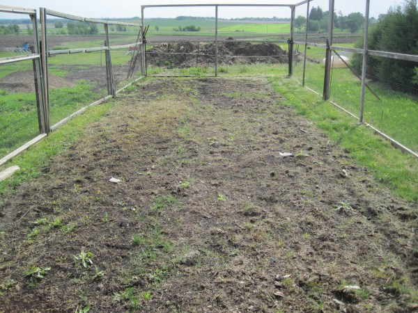 tale of ugly vegetable garden