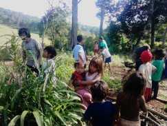 Semillas para huertas para comunidad guaraní