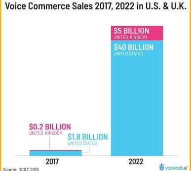 voice search in ecommerce | google shopping action
