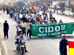 La marcha es una decisión autónoma de los pueblos indígenas de las tierras bajas
