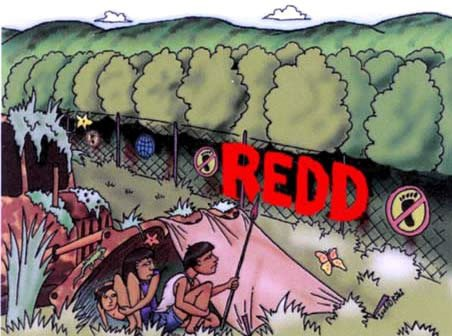 Documentos REDD