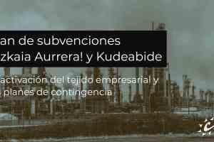 Plan de subvenciones Bizkaia Aurrera! y Kudeabide