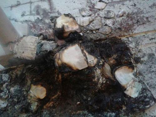 boletas quemadas