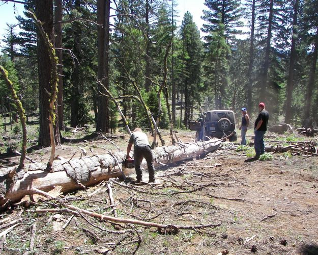 Photos: EWOR Ahtanum State Forest Green Dot Work Party Part 1 of 2 4