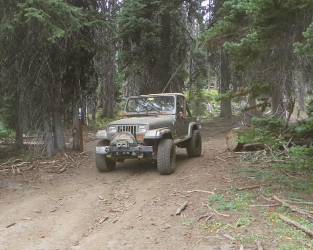 Photos: Trail 4W613 Work Day 45