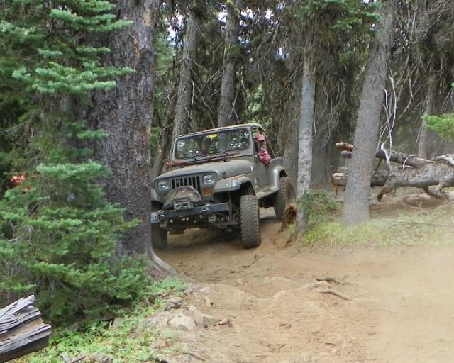 Photos: Trail 4W613 Work Day 50
