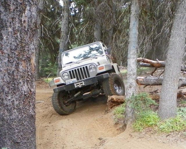 Photos: Trail 4W613 Work Day 55