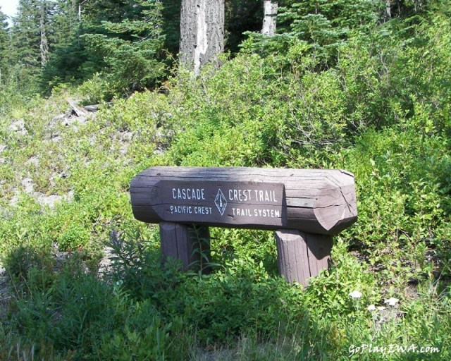 White Pass Scenic Byway.