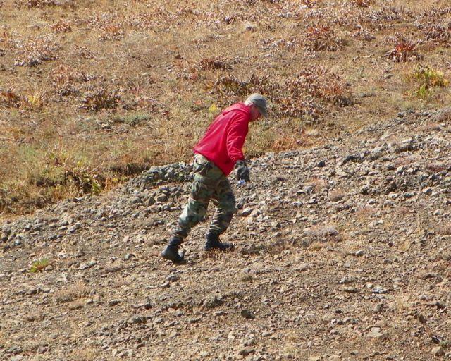 Photos: PNW4WDA Region 4 Pick Up A Mountain 40