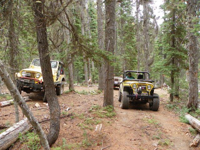 Photos: Yellow Jeep Run - Little Rattlesnake 25