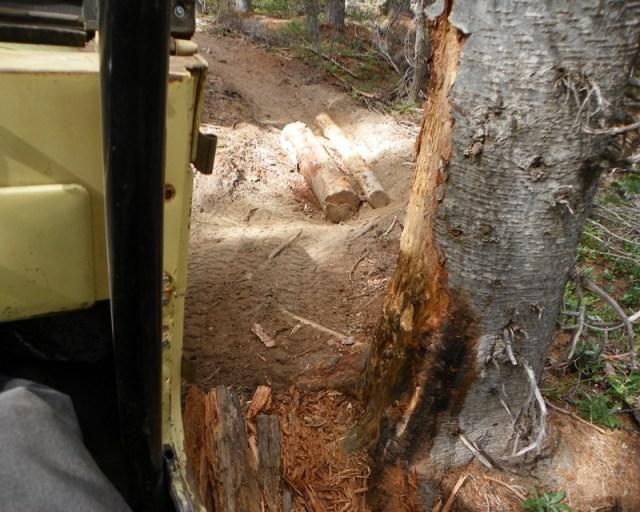 Photos: Yellow Jeep Run - Little Rattlesnake 53