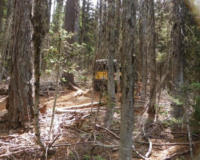 Photos: Yellow Jeep Run - Little Rattlesnake 54