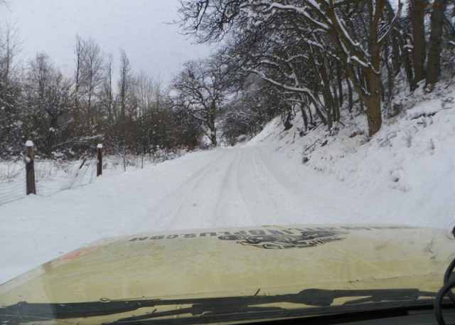Photos: EWOR Sledding Backroads Run at the Ahtanum State Forest 5
