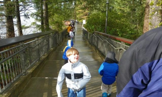 Snoqualmie Falls 8