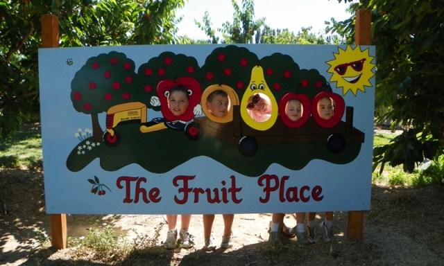 Cherry Festival at Barrett Orchards 12