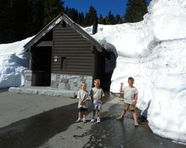 Mt. Rainier Drive 1