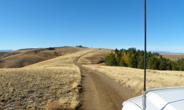 Cleman Mountain Halloween Backroads Run – Oct 29 2011 38