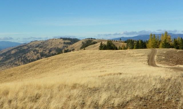 Cleman Mountain Halloween Backroads Run – Oct 29 2011 45