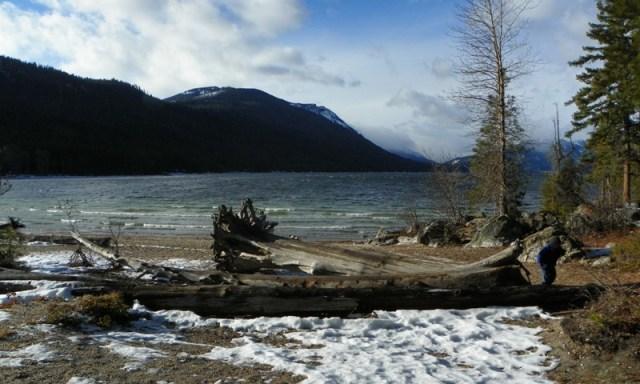 Lake Wenatchee State Park 12