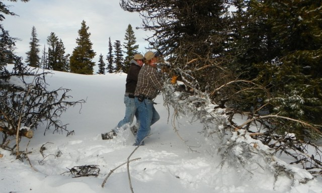 Cowiche: The Search for Deep Snow 52