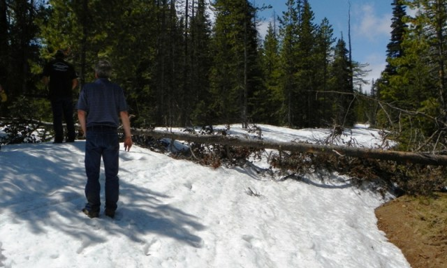 Memorial Day 4×4 Snow Run at the Ahtanum State Forest 19