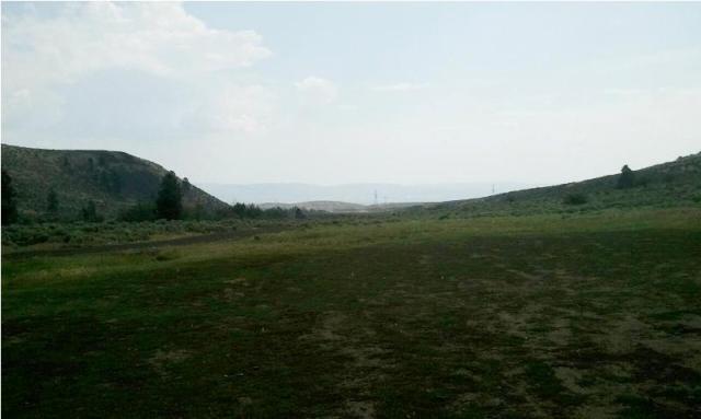 DNR/WDFW Naneum Ridge Field Trip 19