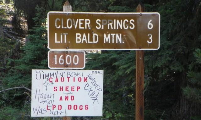Little Bald Mountain Backroads Trip 4