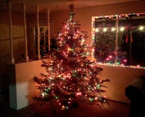 Rimrock Christmas Tree Run