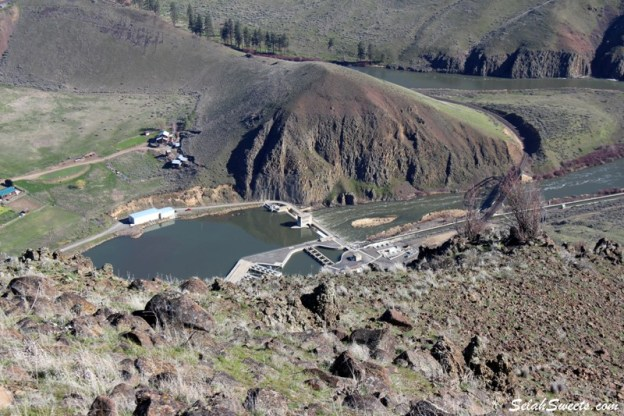 Roza Dam