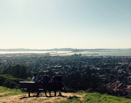 View of the San Fransisco Bay from the walking trails above UC Berkeley