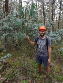 Forest field trip