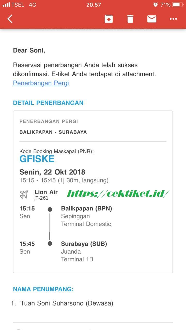 Lion Air Cek In