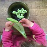 Comment cuisiner avec de jeunes enfants ?