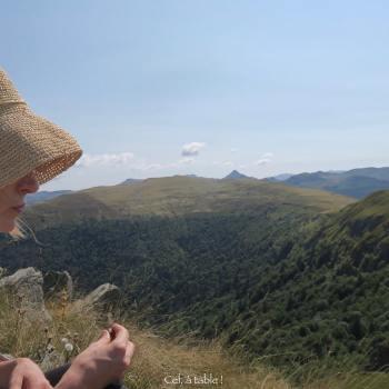 paysage de pâturage d'estive dans le Cantal