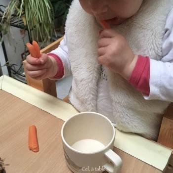 bâtonnets de carotte à grignoter par un jeune enfant