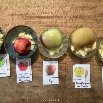 Bols de dégustation de pommes