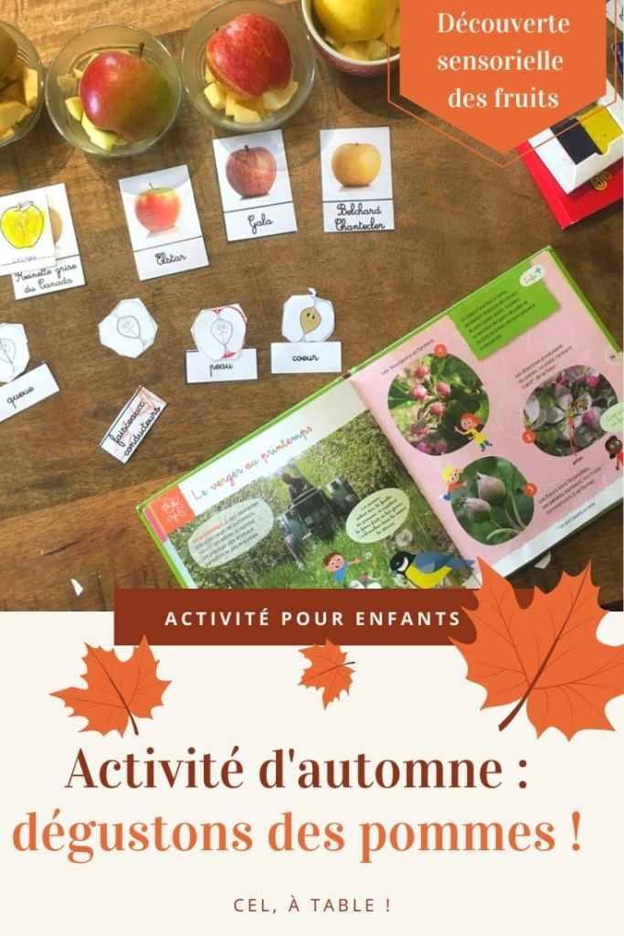 Activité d'automne avec les enfants : dégustation de pommes
