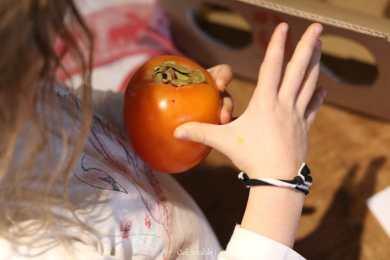 découvrir un fruit inconnu