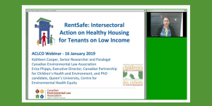 RentSafe: Intersectoral Action on Healthy Housing for Tenants on Low Income