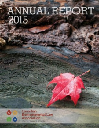 Annual20Report20201520cover
