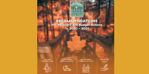 Recommendations for Recovery and Budget Actions in 2020-2021