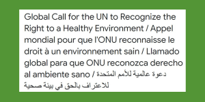 Global Call for the UN Human Rights Council to urgently recognise the Right to a safe, clean, healthy and sustainable environment