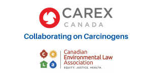 Blog: Collaborating on Carcinogens: our CELA-CAREX Canada Working Group