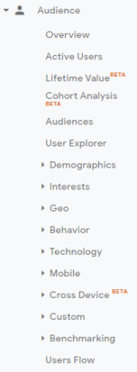 Google Analytics Audience filters.