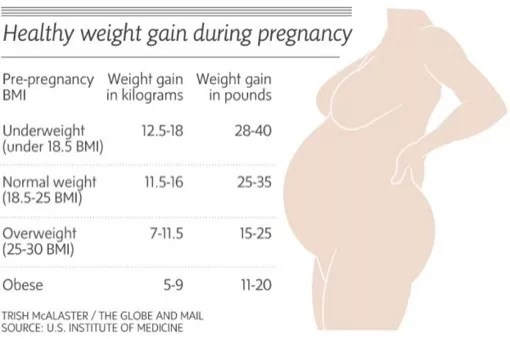 weight gain in pregnancy chart