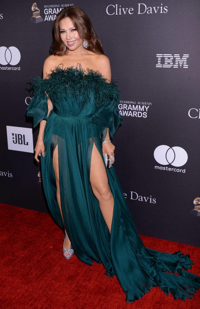 Thalia Attends 2019 Clive Davis PreGrammy Gala in LA  Celeb Donut